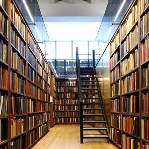 Библиотеки Гуся Железного