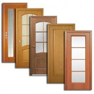 Двери, дверные блоки Гуся Железного
