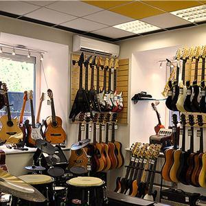 Музыкальные магазины Гуся Железного