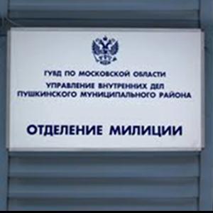 Отделения полиции Гуся Железного