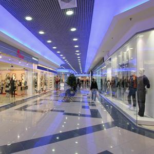 Торговые центры Гуся Железного